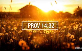 prov-14-32